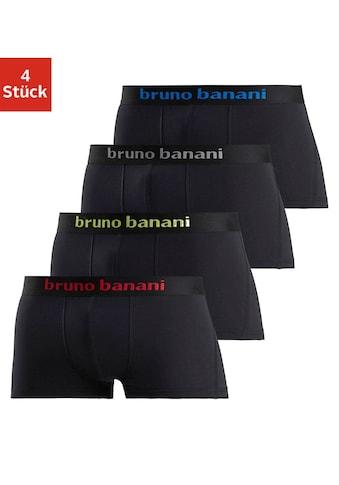 Bruno Banani Hipster, (Packung, 4 St.), Mit Logo Webbund kaufen
