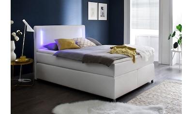 meise.möbel Boxspringbett, mit Topper und LED-Beleuchtung kaufen