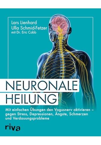 Buch »Neuronale Heilung / Lars Lienhard, Ulla Schmid-Fetzer, Eric Cobb« kaufen