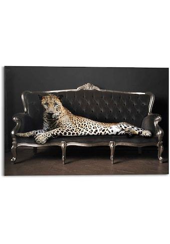 Reinders! Wandbild »Wandbild Leopard Chic Panther - Liegend - Luxus - Relax«, Leopard,... kaufen