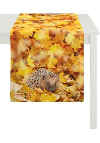 Tischläufer, »1111 Herbstzeit«, APELT (1 - tlg.) kaufen