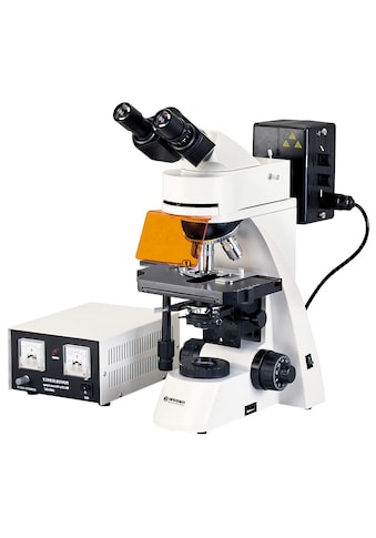 BRESSER Mikroskop »Science ADL 601 F LED 40 - 1000x Mikroskop« kaufen