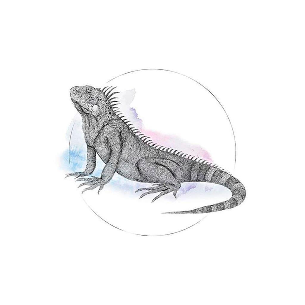Komar Poster »Iguana Watercolor«, Tiere, Höhe: 70cm
