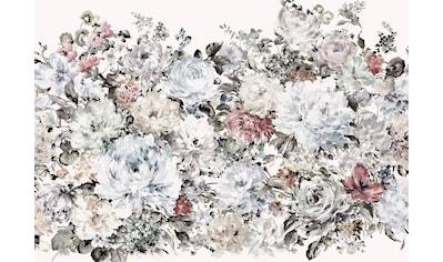 Komar Fototapete »Vliestapete Posy«, bedruckt-geblümt-floral-realistisch, 400 x 280 cm kaufen