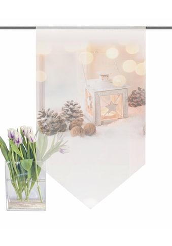 HOME WOHNIDEEN Scheibengardine »LATERNE«, HxB: 100x60 kaufen