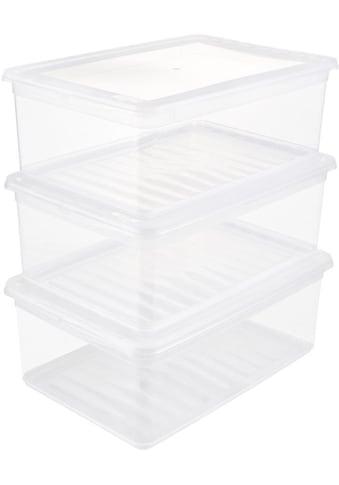keeeper Stapelbox »bea« (Set, 3 Stück) kaufen