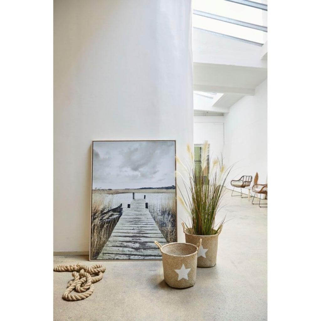 Schneider Kunstpflanze »Wildgras«
