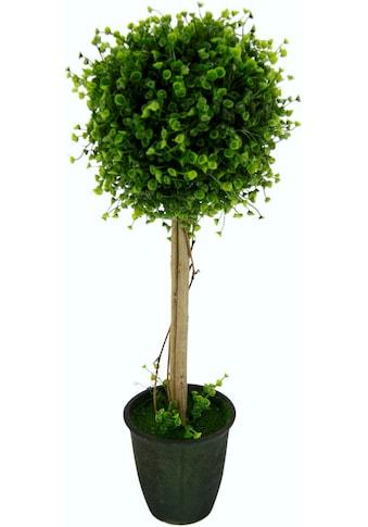 I.GE.A. Kunstbaum »Buchskugelbaum«, im Kunststofftopf kaufen