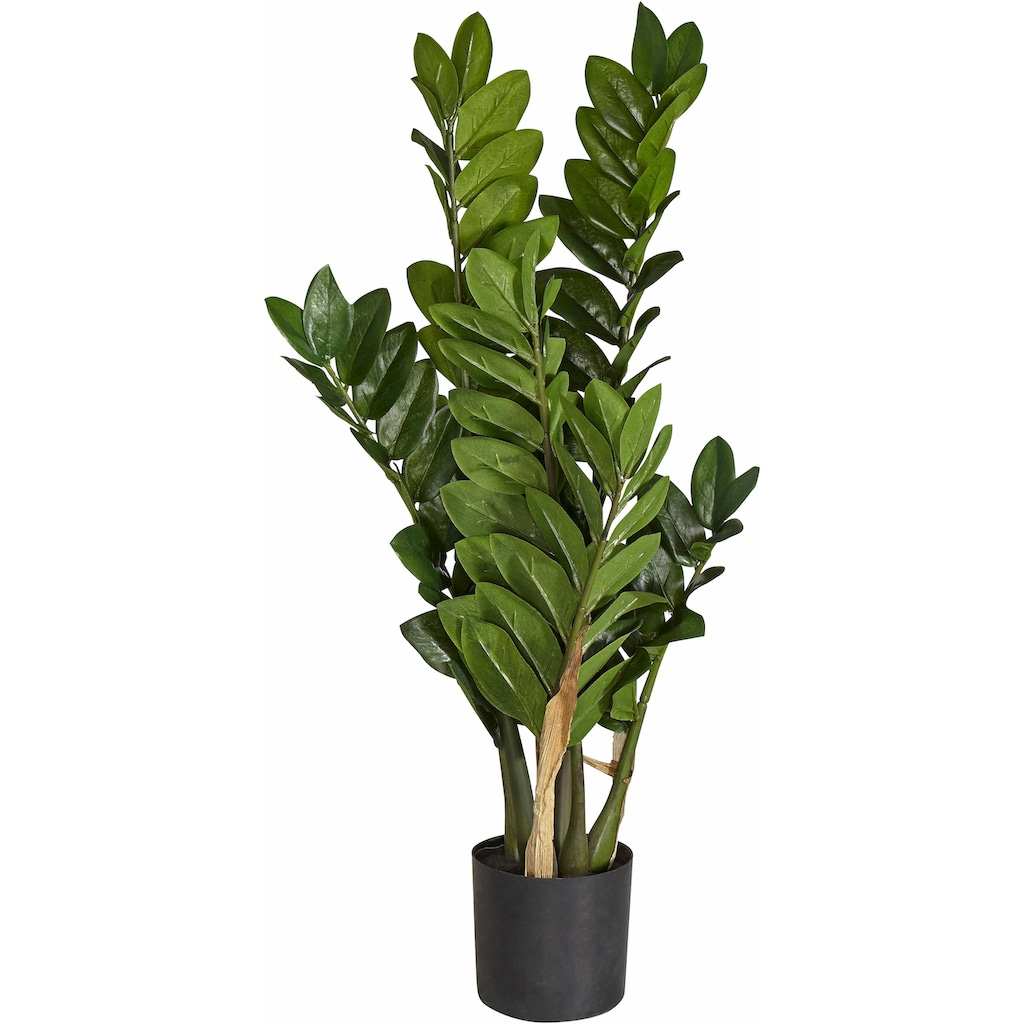 Creativ green Kunstpflanze »Zamifolia«