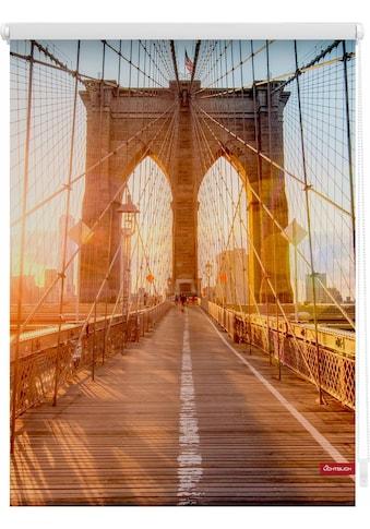 LICHTBLICK Seitenzugrollo »Klemmfix Motiv Brooklyn Bridge«, Lichtschutz, ohne Bohren,... kaufen