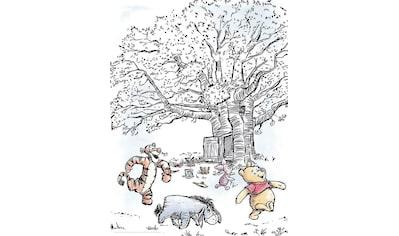 Komar Poster »Winnie Pooh Playground«, Disney, Höhe: 70cm kaufen