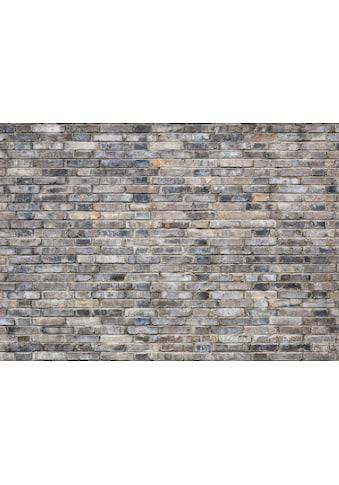 Consalnet Vliestapete »ZIEGEL«, grafisch, in verschiedenen Größen kaufen