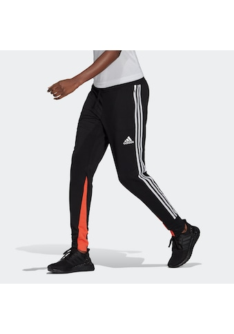 adidas Performance Trainingshose »ADIDAS SPORTSWEAR LIGHTWEIGHT« kaufen
