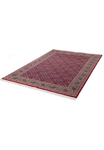 THEKO Orientteppich »Benares Herati«, rechteckig, 12 mm Höhe, reine Wolle, handgeknüpft, mit Fransen, Wohnzimmer kaufen