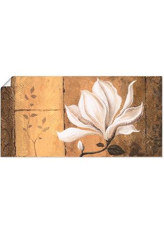 Artland Wandbild »Magnolie an Gold-Braun«, Blumen, (1 St.), in vielen Größen &... kaufen