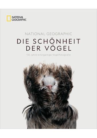 Buch »National Geographic Die Schönheit der Vögel / Catherine Herbert Howell, Karin... kaufen