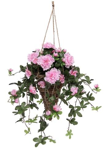 I.GE.A. Kunstpflanze »Azalee in Hängeampel« (1 Stück) kaufen