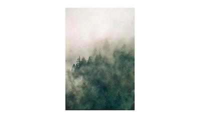 Komar Poster »Tales of the Carpathians«, Natur, Höhe: 70cm kaufen