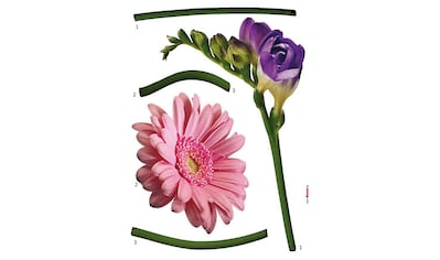 Komar Wandtattoo »Fiore«, selbstklebend, rückstandslos abziehbar kaufen