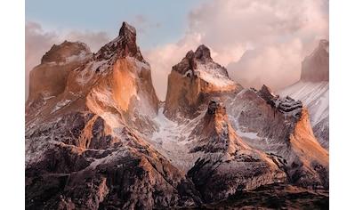 Komar Fototapete »Torres del Paine«, bedruckt-Wald-Meer, ausgezeichnet lichtbeständig kaufen