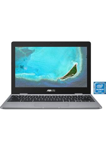 Asus Notebook »C223NA-GJ0068« kaufen