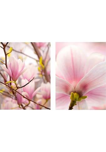 Creativ home Bild »Magnolien«, (Set), 2er Set kaufen