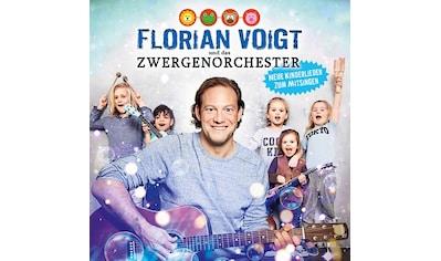Musik-CD »Neue Kinderlieder Zum Mits / Voigt Und Zwergenorchester« kaufen
