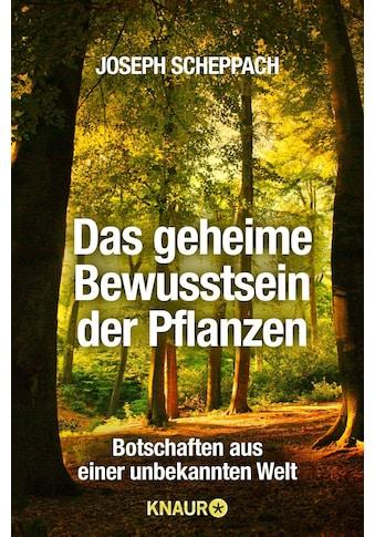 Buch »Das geheime Bewusstsein der Pflanzen / Joseph Scheppach« kaufen