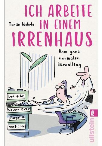 Buch »Ich arbeite in einem Irrenhaus / Martin Wehrle, Dirk Meissner« kaufen