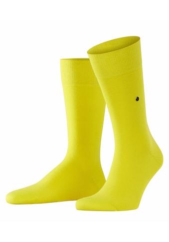 Burlington Socken »Lord«, (1 Paar), aus weicher gekämmter Baumwolle kaufen