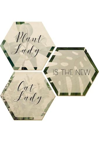 Wall-Art Holzbild »Plantlady is the new Catlady«, (Set) kaufen