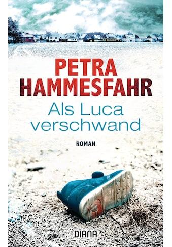 Buch »Als Luca verschwand / Petra Hammesfahr« kaufen