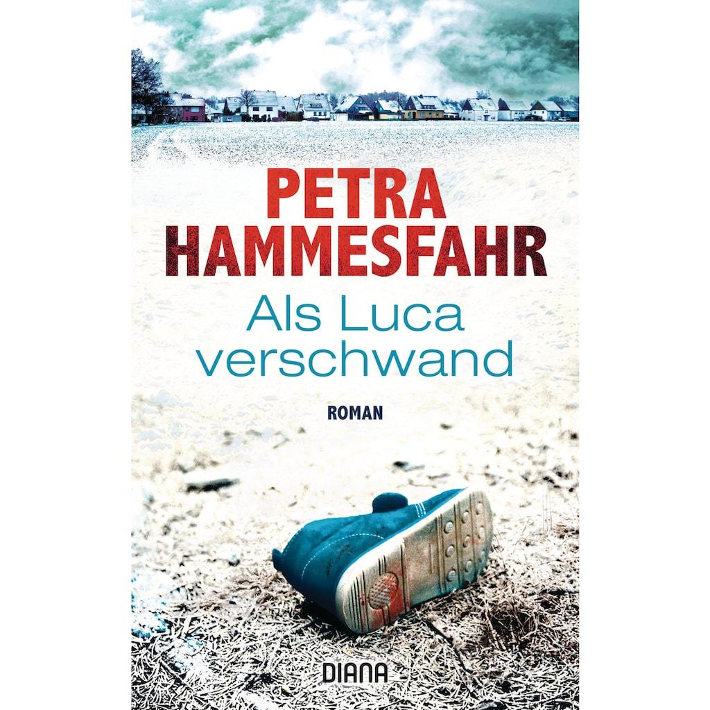 Buch »Als Luca verschwand / Petra Hammesfahr«