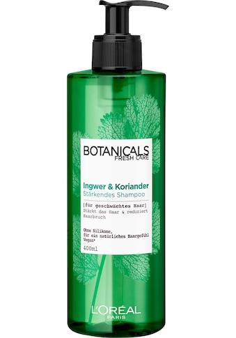 """BOTANICALS Haarshampoo """"Ingwer und Koriander"""" kaufen"""