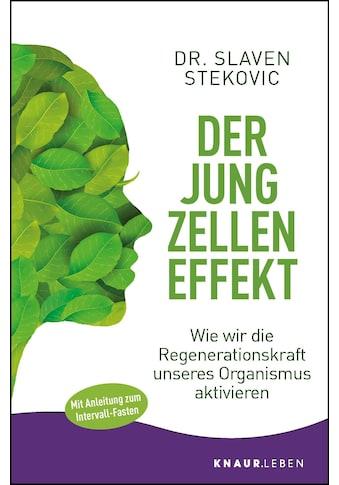 Buch »Der Jungzelleneffekt / Slaven Stekovic« kaufen