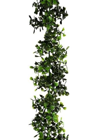 Creativ green Kunstgirlande »Buchsbaum-Girlande« kaufen