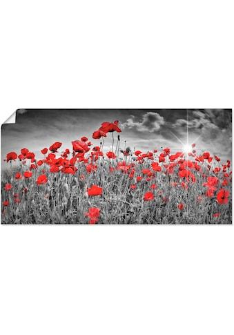 Artland Wandbild »Idyllisches Mohnblumenfeld mit Sonne«, Blumen, (1 St.), in vielen... kaufen