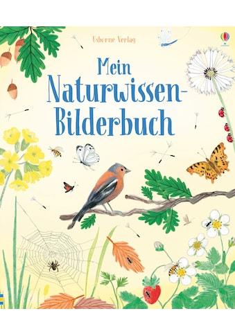 Buch »Mein Naturwissen-Bilderbuch / Minna Lacey, John Russell, Rachel Stubbs« kaufen