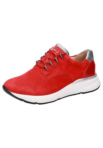 SIOUX Sneaker »Segolia-700-J« kaufen