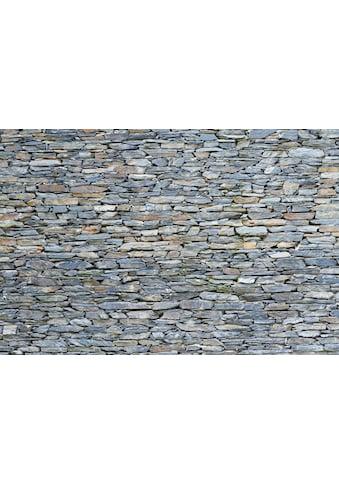 queence Spritzschutz »WCO0226«, Maße ca. 60x40x0,3 cm kaufen