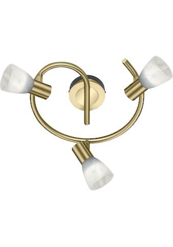 TRIO Leuchten LED Deckenstrahler »LEVISTO«, E14, LED Deckenleuchte, LED Deckenlampe kaufen