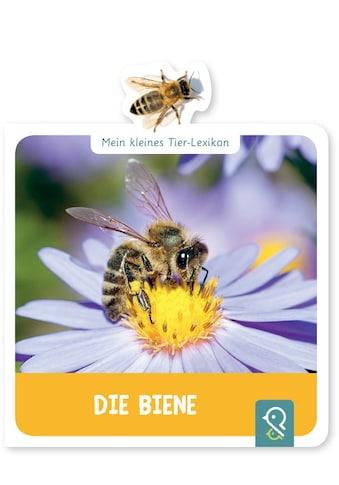 Buch »Die Biene / Hannah Kastenhuber« kaufen