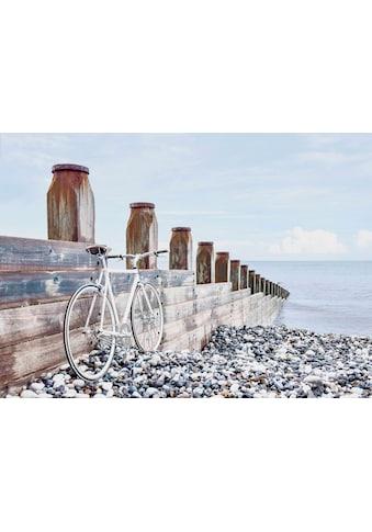 Reinders! Deco-Panel »Fahrrad am Strand«, 140/100 cm kaufen