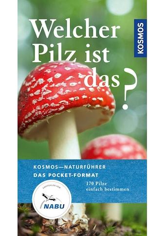Buch »Welcher Pilz ist das? / Markus Flück« kaufen