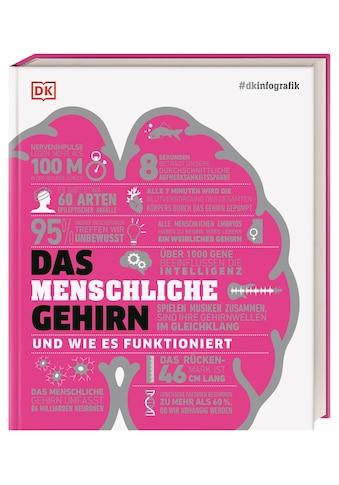 Buch »#dkinfografik. Das menschliche Gehirn und wie es funktioniert / Catherine... kaufen