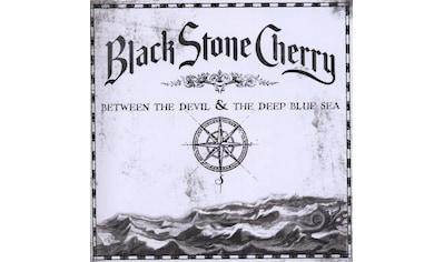 Musik-CD »Between The Devil & The Deep Blue Sea / Black Stone Cherry« kaufen
