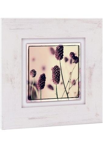 Home affaire Holzbild »Gräser mit Blüten« kaufen