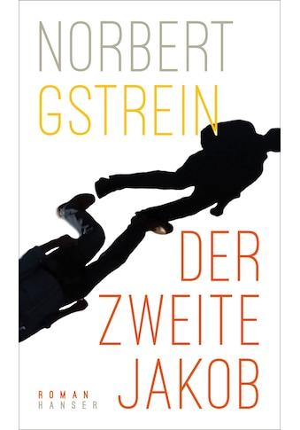 Buch »Der zweite Jakob / Norbert Gstrein« kaufen