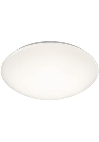 TRIO Leuchten LED Deckenleuchte »PUTZ«, LED-Board, LED Deckenlampe kaufen