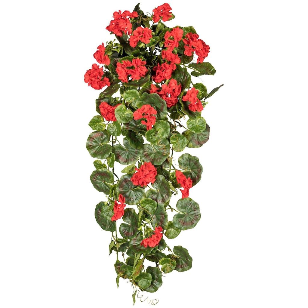 Creativ green Kunstpflanze »Geranienhänger«